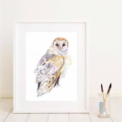 Barn Owl Colour (In situ)