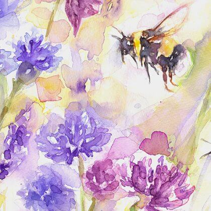 Bees & Wildflowers (close up)