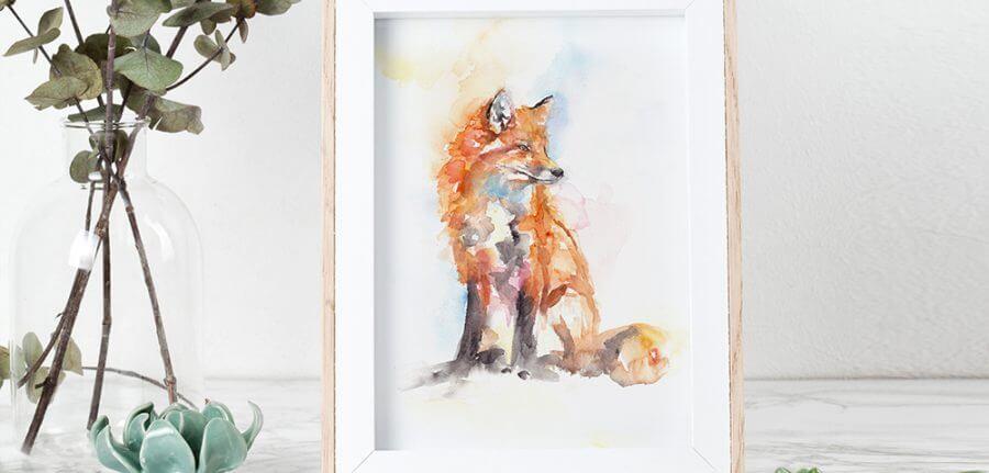 Handsome Fox (In situ)