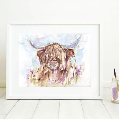 Highland Cow (In situ)
