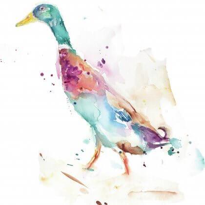 Runner_Duck_Main_Image_rgb
