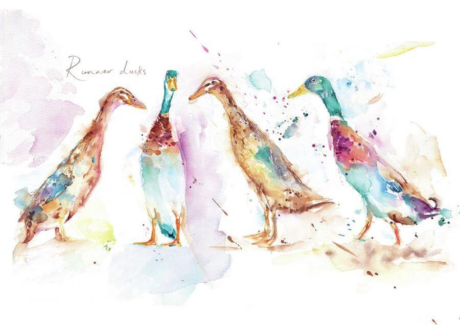 Runner_Ducks_Main_Image_rgb