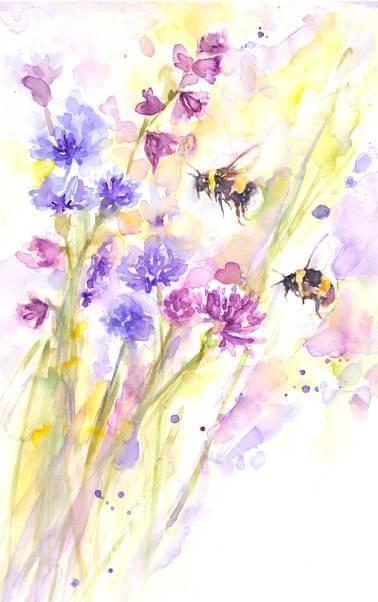 Bees & Wildflowers